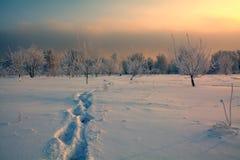 odcisk stopy czasu zimy śniegu Obraz Stock