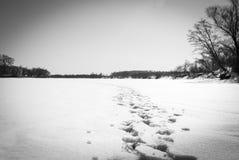 odcisk stopy czasu zimy śniegu Fotografia Royalty Free