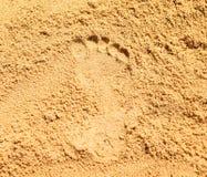 Odcisk stopy na piasku Zdjęcia Royalty Free