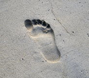 Odcisk stopy na piasku Zdjęcia Stock