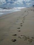 odcisk stopy piasek Zdjęcie Stock