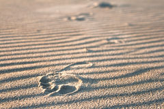 odcisk stopy piaskowaty Zdjęcie Stock