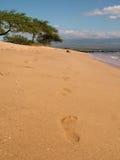 odcisk stopy piasku Zdjęcie Royalty Free