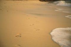 odcisk stopy piasku Zdjęcia Stock