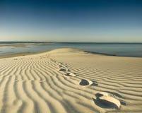 odcisk stopy pustynna wyspa Obraz Royalty Free