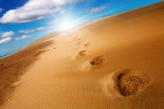 odcisk stopy wydmowy piasek Zdjęcie Royalty Free