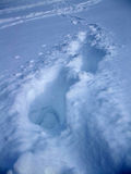 odciski stóp śnieżni Zdjęcie Royalty Free