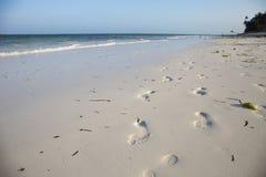 Odciski stopi w białym piasku, Paje plaża, Zanzibar zdjęcia stock