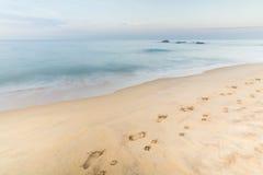 Odciski stopy mężczyzna i pies na piasku w Hikkaduwa Fotografia Stock