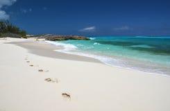 Odciski stopy na desrt plaży Obrazy Stock