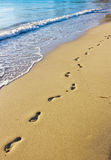 Odciski stopy na mokrym piasku Fotografia Stock