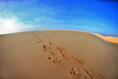 Odciski stopy na piasku zdjęcia stock