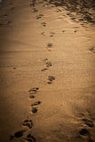 Odciski stopy na piasku, plaża w popołudniowym słońcu Znajduje twój pa Obrazy Stock