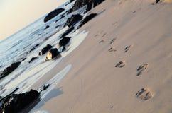 Odciski stopy na plaży Zdjęcie Royalty Free
