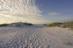 Odciski stopy w piasek diun wczesnym poranku Obrazy Royalty Free