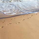 Odciski stopy w piasku Obraz Stock