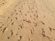 Odciski stopy w piasku Zdjęcie Royalty Free