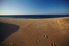Odciski stopy w piasku Zdjęcia Royalty Free