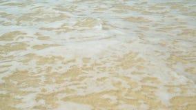 Odciski stopy w piasku 4K zbiory wideo