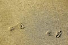 Odciski stopy w piasku na plaży Fotografia Stock