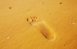 Odciski stopy w piasku Odcisk mężczyzna ` s stopa na piasku na plaży Obrazy Royalty Free