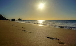 Odciski stopy w plaży Zdjęcia Stock