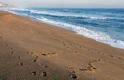 Odcisku stopy ślad na Pustym Piaskowatej plaży Seascape Zdjęcie Royalty Free