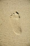 Odcisku stopy piasek Zdjęcie Royalty Free