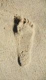 Odcisku stopy piasek na plaży Fotografia Royalty Free
