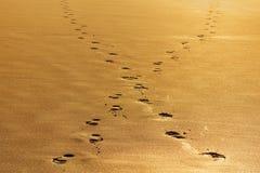 Odcisku stopy rozdroże na piasku Zdjęcie Stock