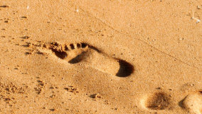 Odcisku stopy tło Fotografia Royalty Free