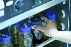 Odczynnik butelki w gabinetowy zarazka bezpłatnym. Obraz Stock