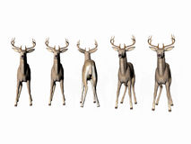 Odd Deer Out Stock Photo