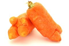 Odd Looking Carrot Royaltyfri Bild