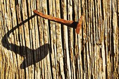 Odd nail. In an old plank with shadow Royalty Free Stock Photography