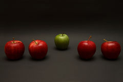 Odd One Out Royalty Free Stock Photo