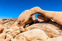 Odd Shaped Rock em Joshua Tree National Park imagem de stock royalty free