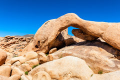 Odd Shaped Rock i Joshua Tree National Park Royaltyfri Bild