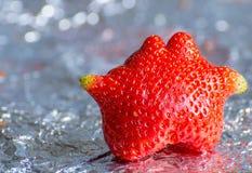 Odd Shaped Strawberry. Odd Shaped Garden Strawberry on Aluminium Foil Royalty Free Stock Photos