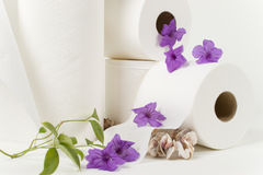 Odd waterfall. Paper towel and toilet paper rolls with natural flowers and see shells Royalty Free Stock Image