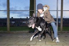 oddalony pies zawzięty jego skaczący właściciel Fotografia Stock