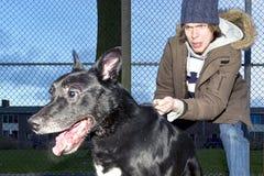 oddalony pies zawzięty jego skaczący właściciel Fotografia Royalty Free