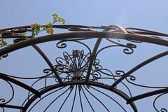 ODDOLNY widok metal kopuła PRZECIW niebu Z RÓŻANYM pełzaczem obrazy stock