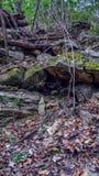 Oddolny widok zakrywający w spadać skałach mała ścieżka obraz stock