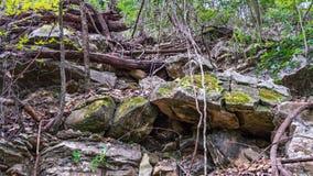 Oddolny widok zakrywający w spadać skałach mała ścieżka zdjęcia stock