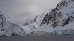 Oddykhe för na för Pingviny posledobychi ryby Royaltyfri Fotografi