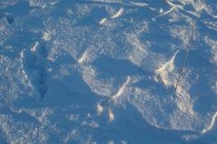 oddziaływania wzorów rezultata śniegu słońca wiatr Fotografia Stock