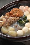 Oden, alimento japonés imagen de archivo libre de regalías