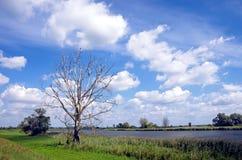 Oder River Brandenburg, Germany Royalty Free Stock Photos