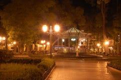 Odessa City Garden. The view of Odessa City Garden with the rotunda at night Royalty Free Stock Photo